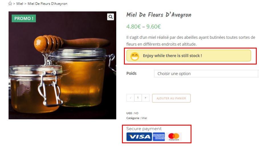 Fiche Produit Plugin Easy Custom OceanWP Shop